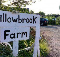 willowbrook-farm
