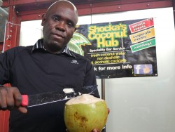 shocka's coconut hub London Halal Food Festival 2016
