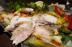 sea bass Horapha Thai Cuisine Queensway Halal London Restaurant