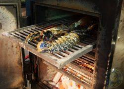 josper grill Skewd Kitchen Turkish Halal Cockfosters