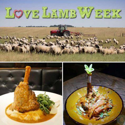 love lamb week tarshish the banc