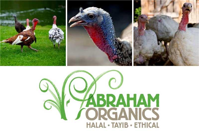 Halal Turkey Online Order Delivery Organic Free Range Abraham Organics