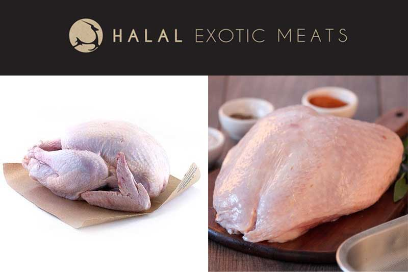 Halal Exotic Meats Turkey Online Order Delivery