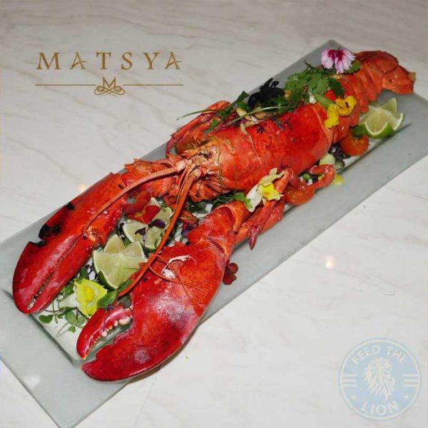 Matsya Indian Halal mayfair restaurant