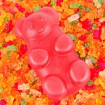 Halal Sweets Company Gummy Bear Candy